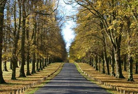 Five beautiful walks in Yorkshire
