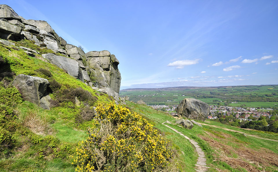 Leeds Cow And Calf Rocks